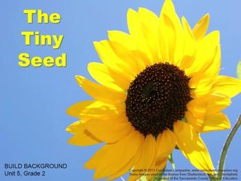 CA Treasures The Tiny Seed Grade 2 Unit 5 (Common Core Standards)