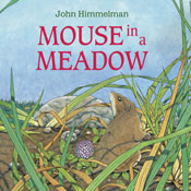 A Mouse in a Meadow