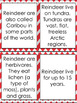 CHRISTMAS UNIT Reindeer and Candy Canes Facts Puzzles Worksheets
