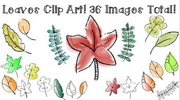 CLIP ART - Fall/Autumn Leaves