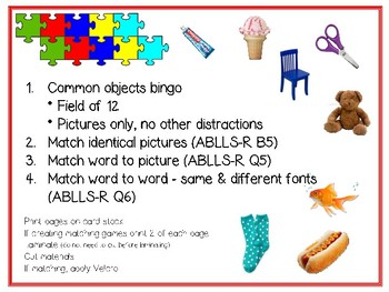 COMMON OBJECTS BINGO, MATCHING GAMES, FILE FOLDER GAMES ABLLS-R
