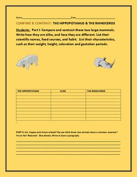COMPARE & CONTRAST: THE HIPPO & THE RHINO
