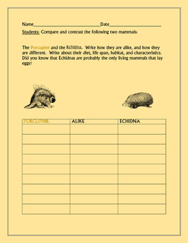 COMPARE/CONTRAST: THE PORCUPINE & THE ECHIDNA