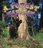 A Forest Habitat (eBook)