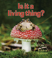 Is it a living thing?