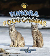Tundra Food Chains (eBook)