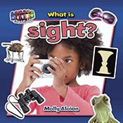 What is sight? (eBook)