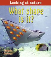 What shape is it?
