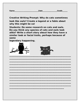 CREATIVE WRITING PROMPT: WHY DO SOME CATS AND OWLS LOOK ALIKE?