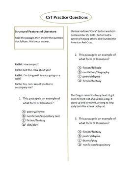 CST Language Arts Practice Packet #2