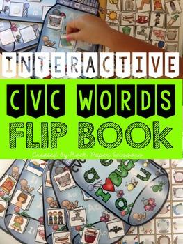 CVC Words Interactive Flip Book, Bug Theme