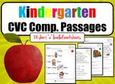 CVC Reading Comprehension