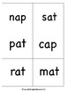 CVC Short Vowel Snatch Games with Real and Nonsense Words!