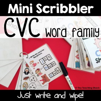 CVC Word Mini Scribblers