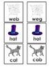 CVC Word Sort - Correct or Incorrect?