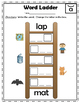 CVC Word Work - Puzzles and Word Ladders - RTI