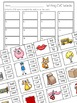 CVC Words Clip Cards (Includes Two Sets)