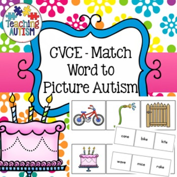 CVCE Word to Picture Matching Activity