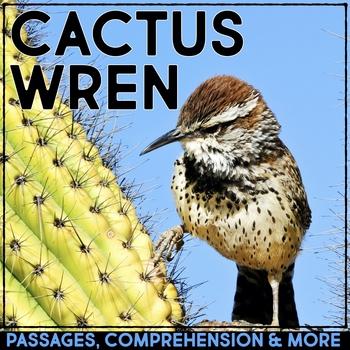 Cactus Wren: Informational Article, QR Code Research & Fact Sort