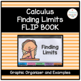 Calculus Working with Limits Graphic Organizer and Worksheet