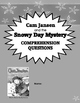 Cam Jansen and the Snowy Day Mystery comprehension questio