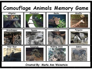 Camouflage Animals Memory Game
