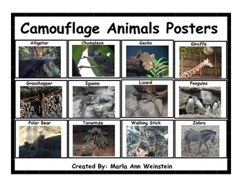 Camouflage Animals Posters