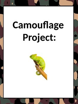Camouflage Take home project