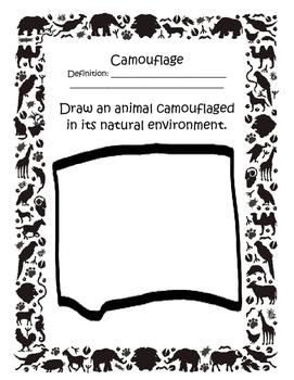 Camouflage worksheet