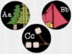 Camping Themed Word Wall Headers
