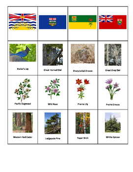Canadian Provincial Territories and Symbols Activity Pack