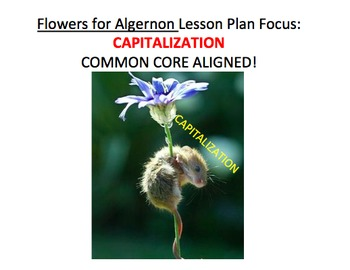 Capitalization in Flowers for Algernon - Lesson Plan, Acti