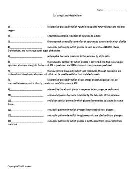 Carbohydrate Metabolism Quiz or Worksheet for Biological C
