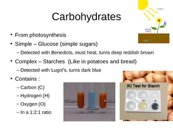 Carbohyrdates, Lipids and Proteins