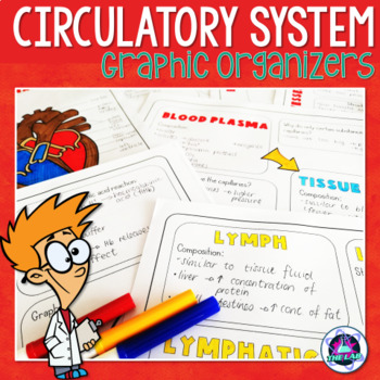 Cardiovascular System Graphic Organizers