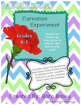 Carnation Experiment Printables