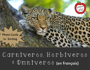 Carnivore, Herbivore and Omnivore Sorting Activity (French