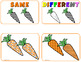 Carrot Centers Spring Activities Shapes Sizes Visual Discr