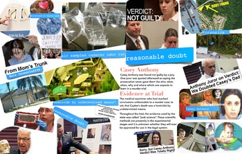 Casey Anthony FREE POSTER Murder Trial Junk Evidence Reaso