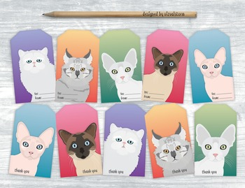 Cat Gift Tags - 10 Handmade Illustrated Pet Hang Tags For