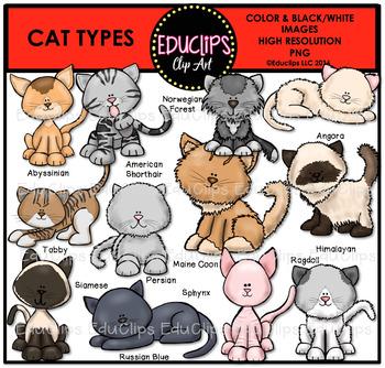 Cat Types Clip Art Bundle {Educlips Clipart}