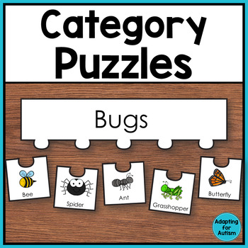 Category Puzzles Work Task - Classifying Items by Group