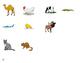 Category Sort! A file folder game: /k/ and /g/