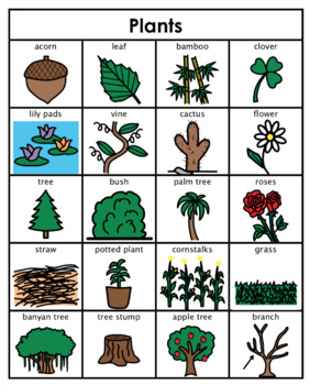 Category/Concept Boards - Plants