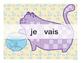 French Catjugation: Single Verb ALLER Conjugation
