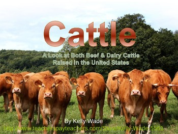 Free Cattle & Agriculture