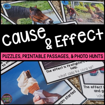 Cause and Effect (Puzzles, Printables, & More!)