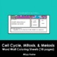 Cell Cycle, Mitosis and Meiosis Word Wall Coloring Sheet B