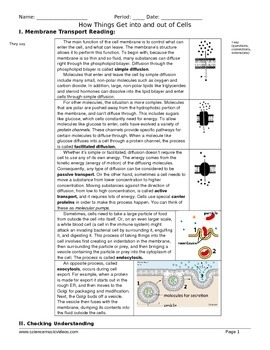 Cell Membrane Transport Reading and Worksheet
