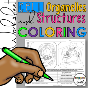 Cell Organelles and Structures Coloring for Your Middle an